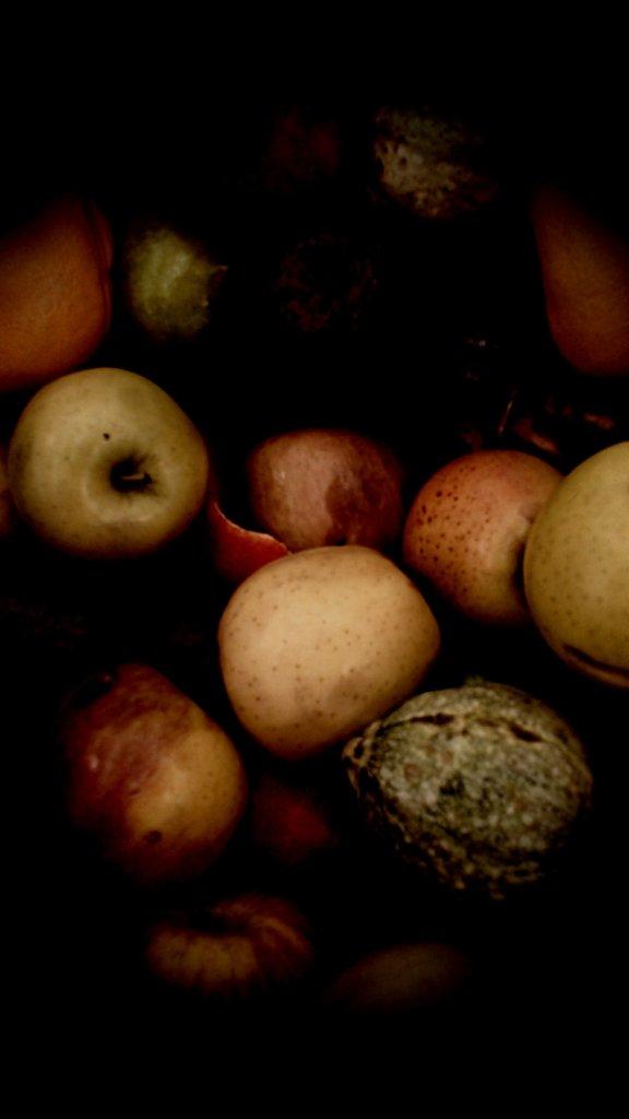 תפוחים בסנטר, מעובד, מרץ 13